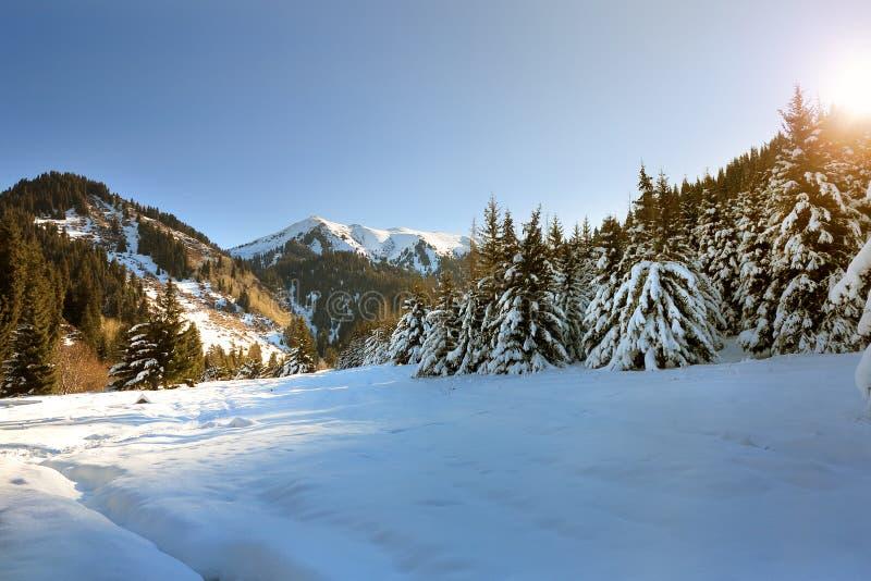 Alvorecer nas montanhas do inverno imagem de stock