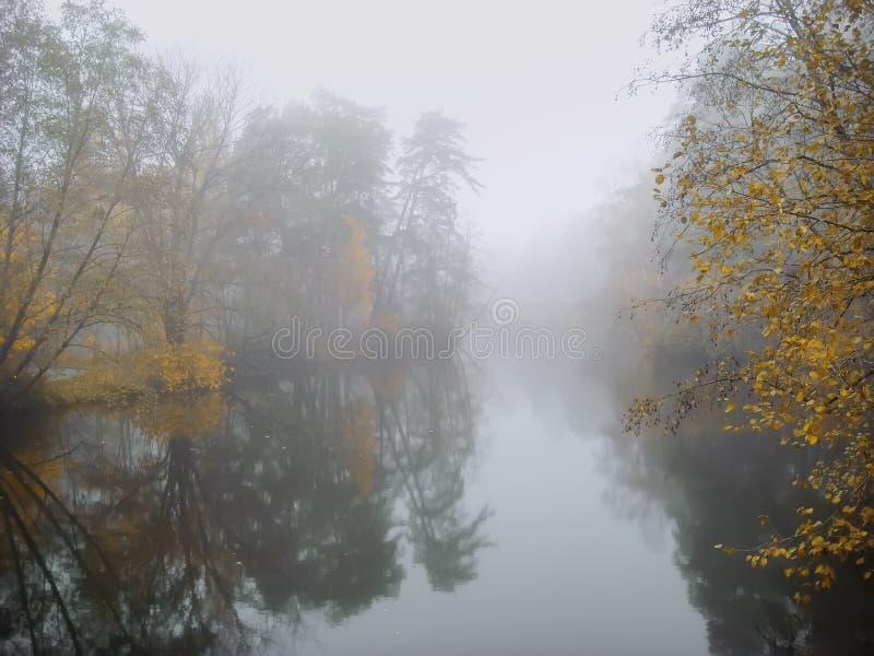 Alvorecer nevoento A floresta colorida perto do lago, névoa mistic na manhã, lago do outono no alvorecer com nuvens refletiu no imagens de stock