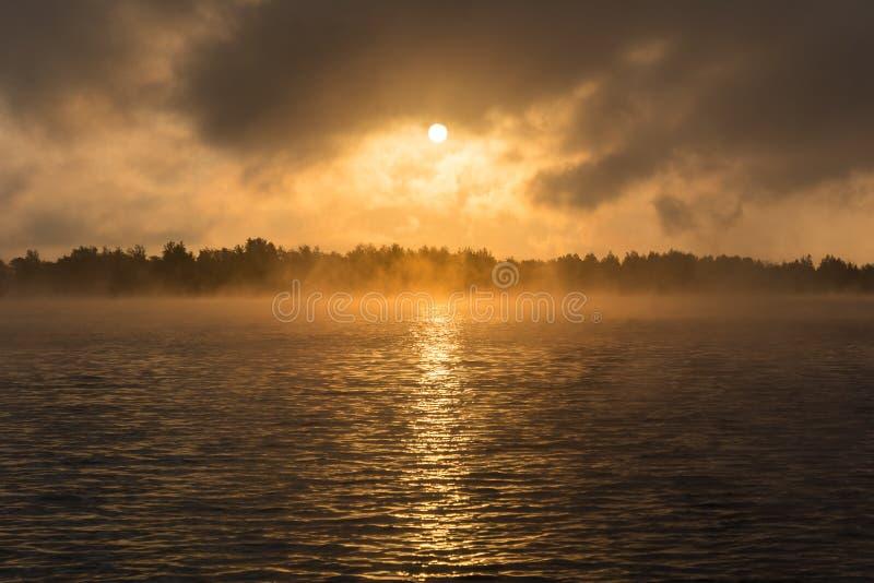 Alvorecer no lago na floresta fotos de stock royalty free