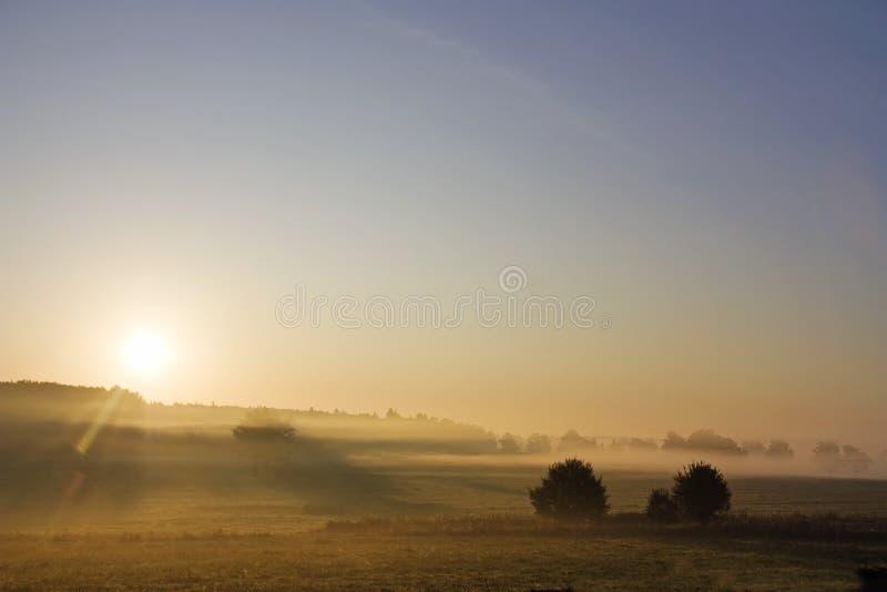 Alvorecer, paisagem rural fotos de stock royalty free