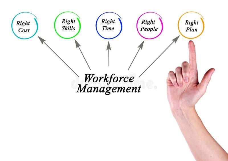 Alvos da gestão da mão de obra fotos de stock