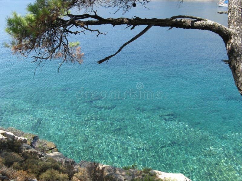 Alyki海滩在Tassos 库存图片