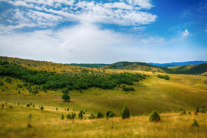 Aménagez en parc autour de la gorge d'Uvac de rivière au matin ensoleillé d'été images stock