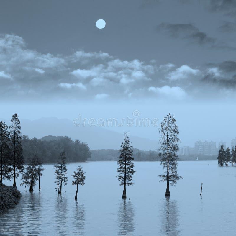Aménagez en parc avec des arbres dans l'eau à la pleine lune, Chine photos libres de droits