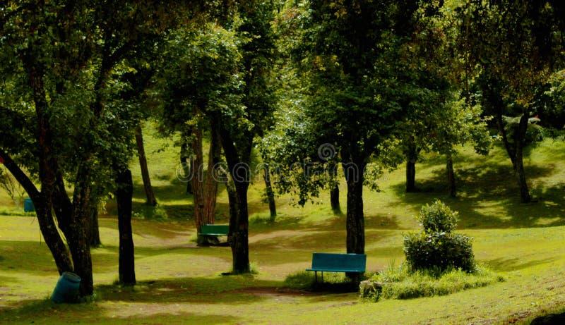 Aménagez en parc avec le banc de parc en parc de Bryant image stock