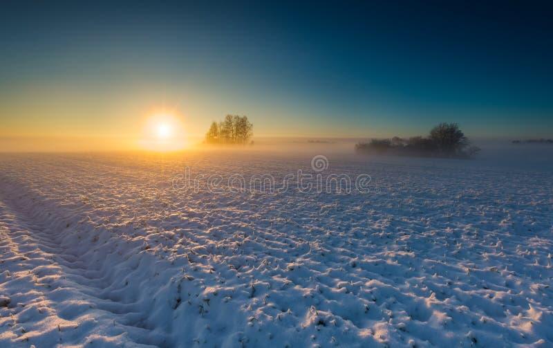 Aménagez en parc avec le champ d'hiver sous la neige au coucher du soleil images libres de droits