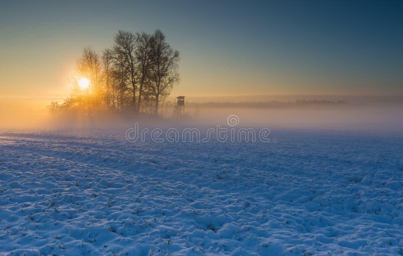 Aménagez en parc avec le champ d'hiver sous la neige au lever de soleil images stock