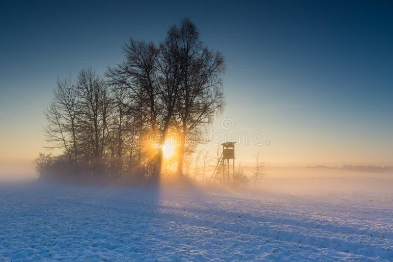 Aménagez en parc avec le champ d'hiver sous la neige au lever de soleil photographie stock libre de droits