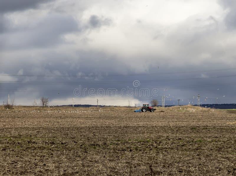 Aménagez en parc avec le tracteur de ferme labourant un champ i images stock