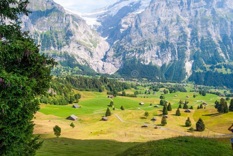 Aménagez en parc avec le village de montagne en été, Grindelwald, Suisse photo libre de droits