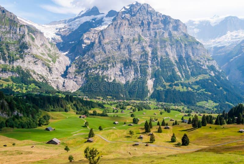Aménagez en parc avec le village de montagne en été, Grindelwald, Suisse photo stock