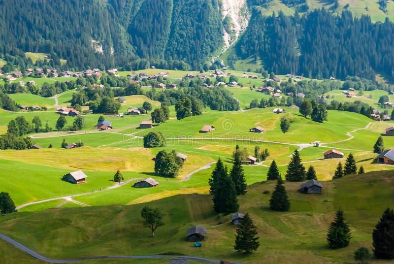 Aménagez en parc avec le village de montagne en été, Grindelwald, Suisse image stock