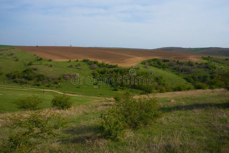 Aménagez en parc avec les collines herbeuses et les champs labourés au printemps photographie stock libre de droits