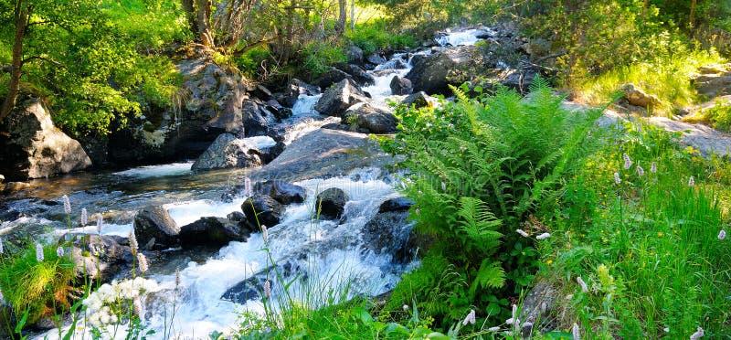 Aménagez en parc avec les montagnes, la forêt et une rivière dans l'avant Phot large photographie stock libre de droits