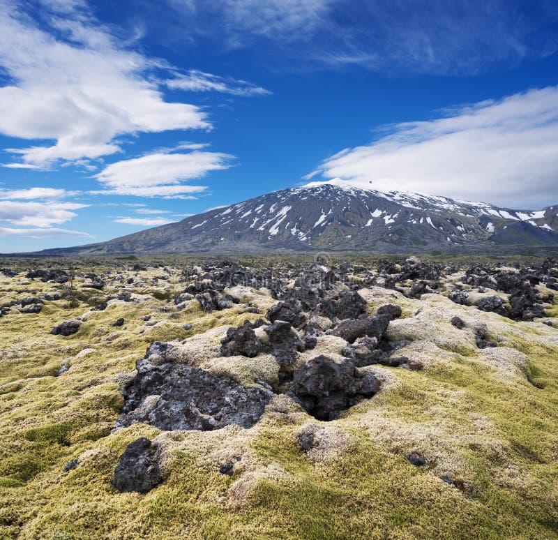 Aménagez en parc avec un gisement de lave et le dessus d'un volcan, Islande image libre de droits
