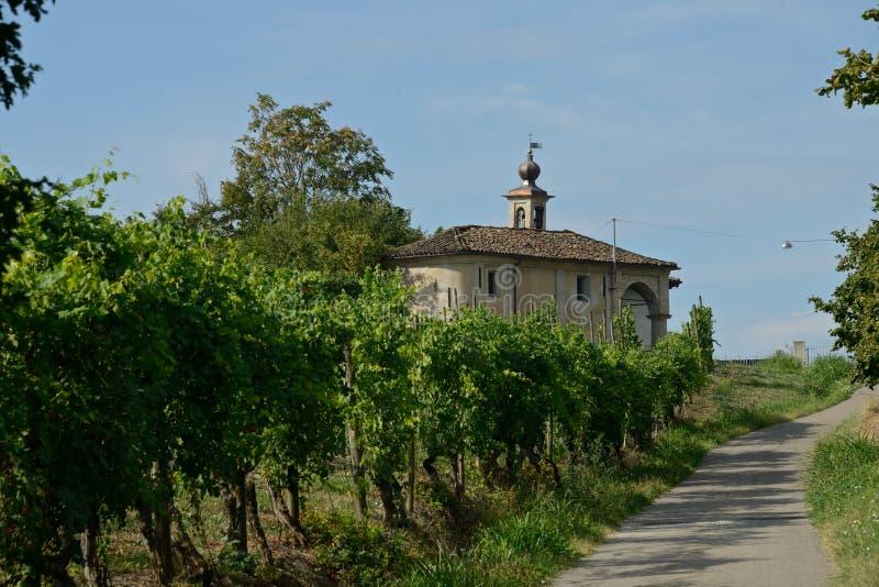 aménagez en parc avec un vignoble près d'une église et une route dans la campagne photo stock