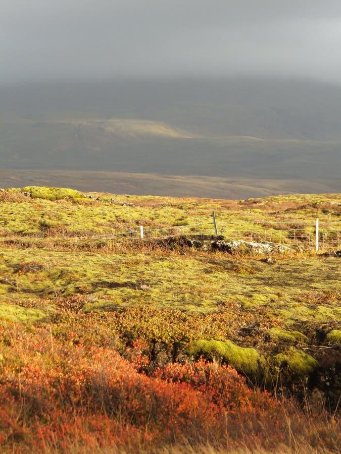 Aménagez en parc chez Thingvellir, Islande, autour de la crevasse continentale photographie stock libre de droits