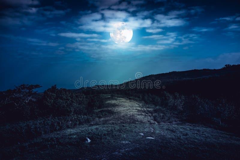 Aménagez en parc en nature de belle pleine lune derrière le nuage et la route image stock