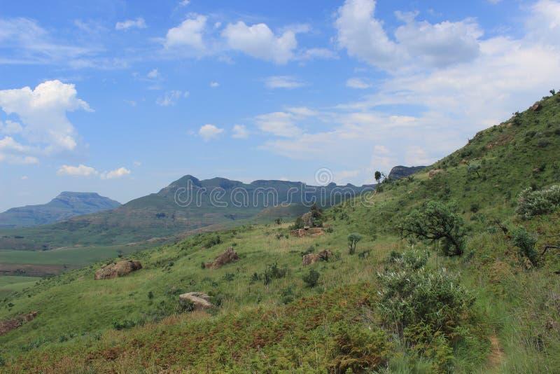 Aménagez en parc en parc national natal royal en Afrique du Sud, nature africaine, usines photo libre de droits