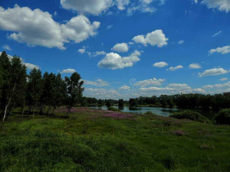Aménagez en parc sur le lac avec les rivages verts et le ciel bleu photo stock