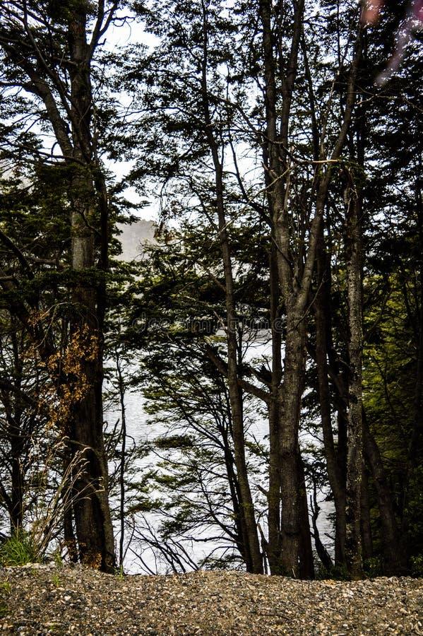 Aménagez l'Argentine en parc, visibilité directe les Andes de San Martin De photos stock