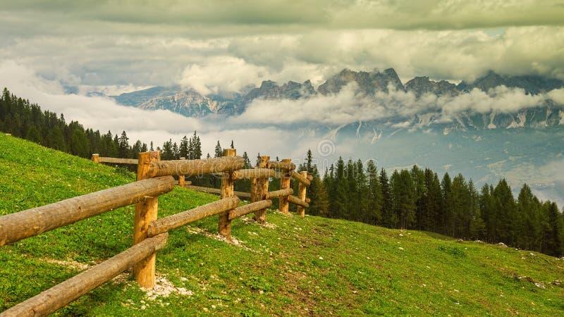 Aménagez l'Italie en parc, dolomites - la visite de forêt de pin photographie stock