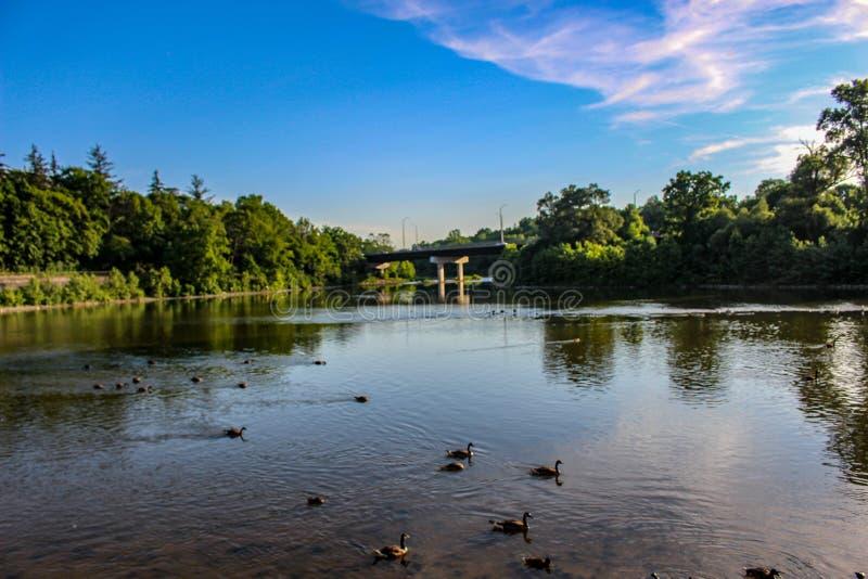 Aménagez la photo en parc du Canada de Londres Ontario de parc de banque de ressort photo stock