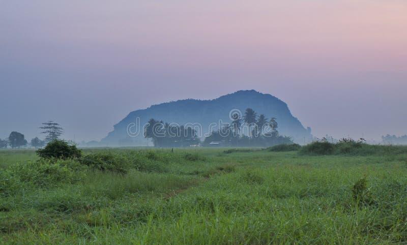 Aménagez la vue en parc des rizières, village, l'arbre de noix de coco, montagne pendant le lever de soleil images libres de droits