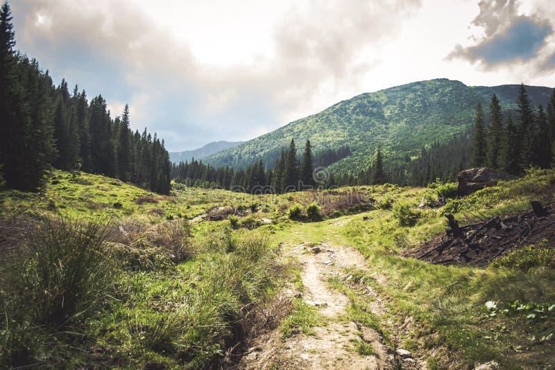 Aménagez le chemin en parc par les montagnes un jour nuageux d'été photos libres de droits