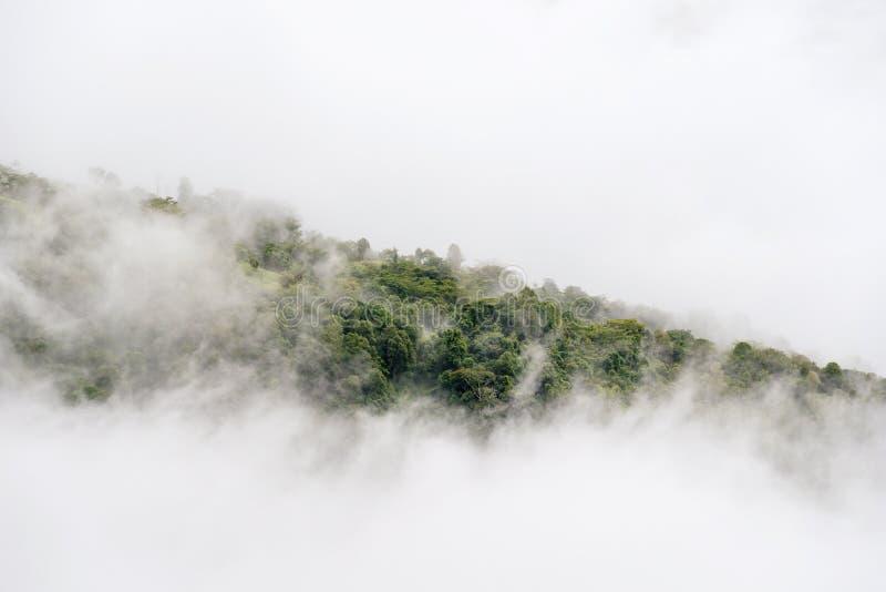 Aménagez le lever de soleil en parc rêveur brumeux et fantastique sur les montagnes, bâti images stock