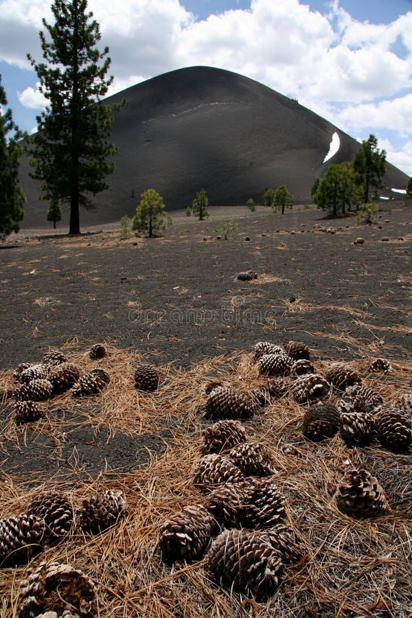 aménagez volcanique en parc images stock