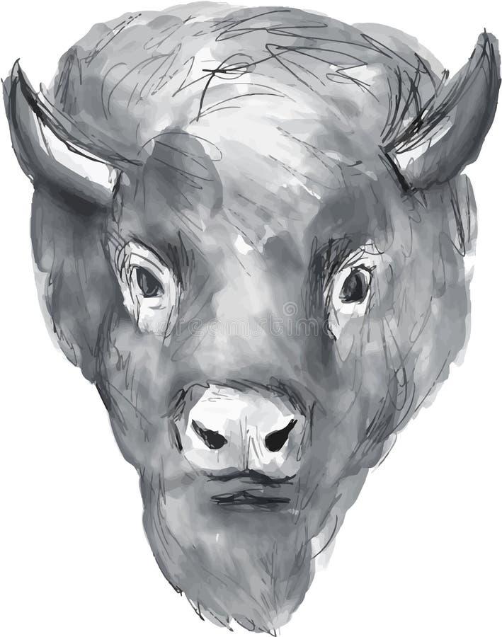 Américain Bison Head Watercolor illustration libre de droits