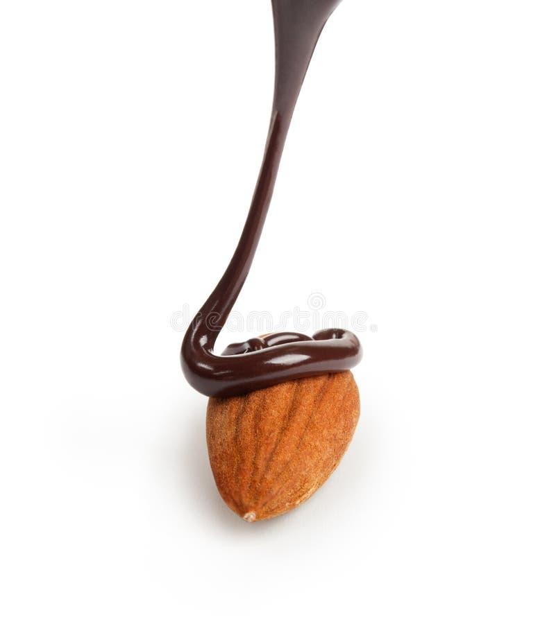 Amêndoa com fluxo do chocolate imagens de stock