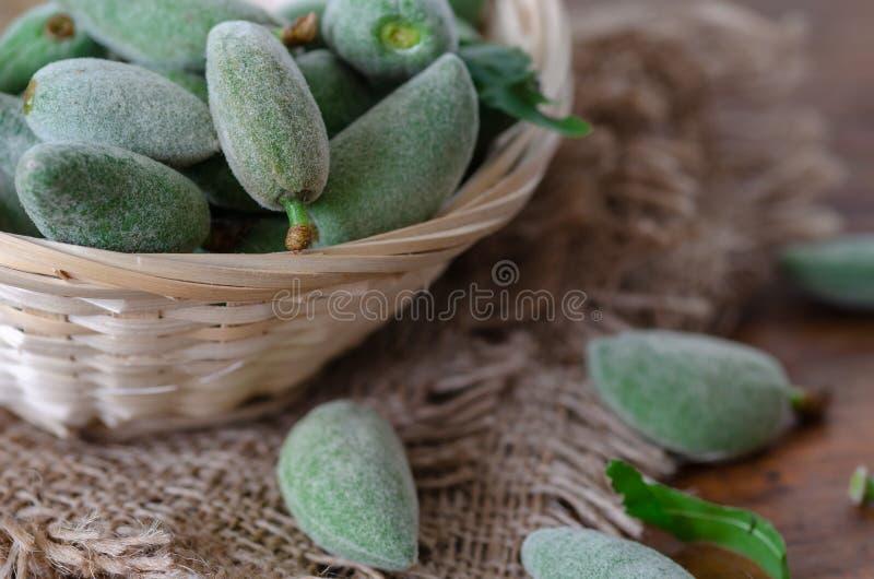 Amêndoas verdes verdes frescas foto de stock royalty free