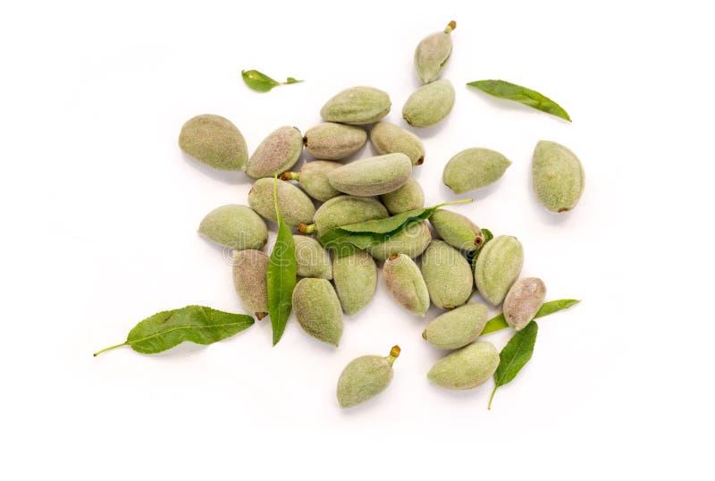 Amêndoas verdes frescas no fundo branco foto de stock royalty free