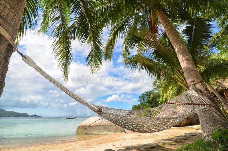 Amaca che appende fra le palme alla spiaggia sabbiosa e la costa di mare fotografia stock