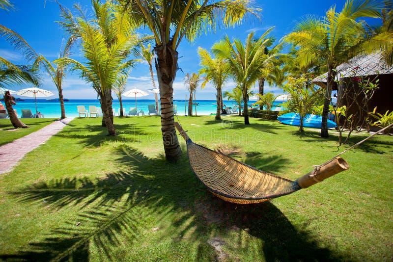 Amaca della spiaggia sotto la palma dal mare a Koh Lipe fotografia stock