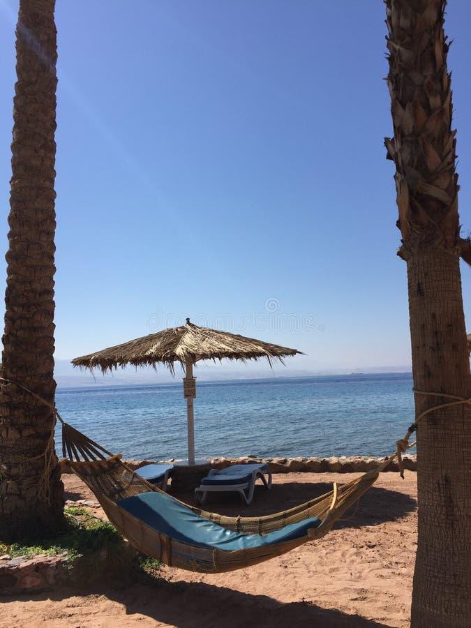 Amaca libera della spiaggia del mare di festa rilassata fotografia stock libera da diritti