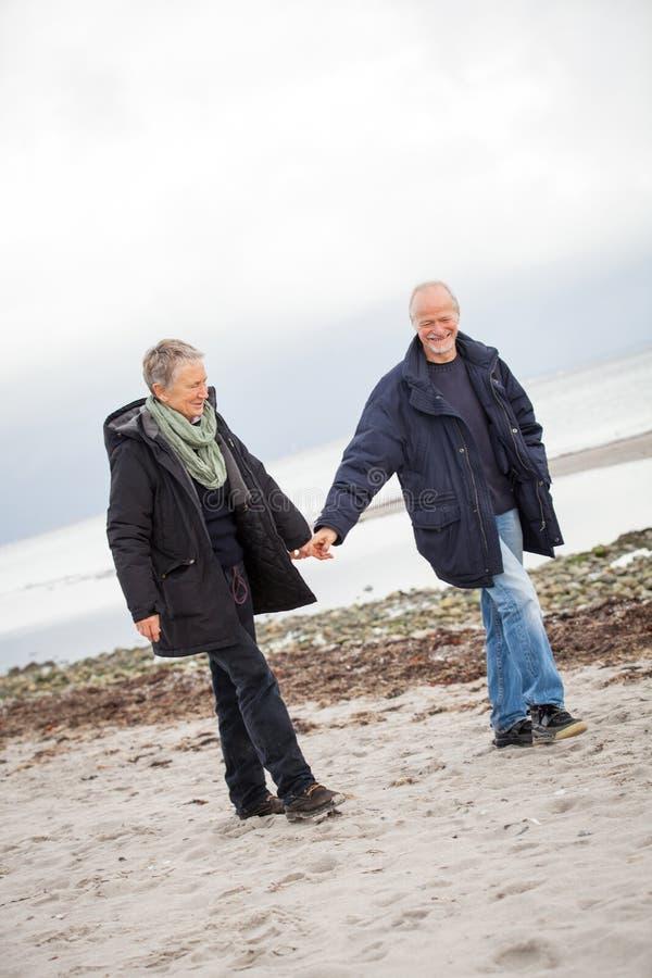 Amadureça os pares felizes que andam na praia no outono imagem de stock