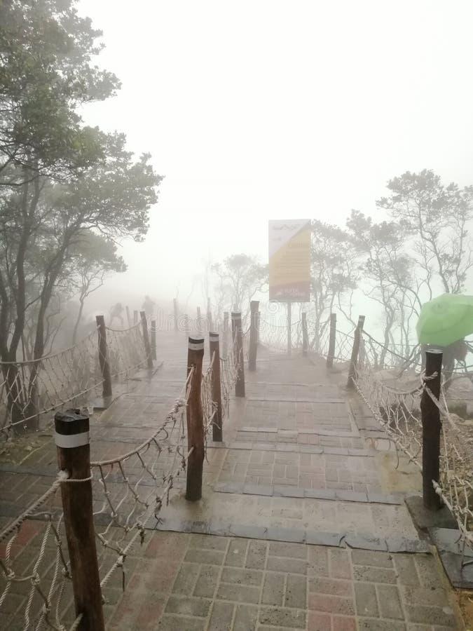 Amaizing foging scenery at Kawah putih in Bandung Indonesia, den vulkaniska kratern Mount Patuha royaltyfria foton
