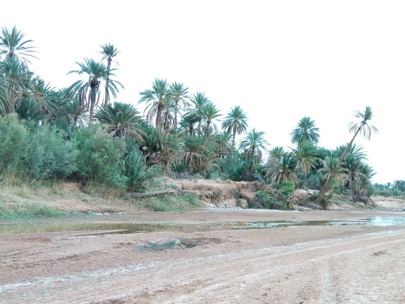 Amaizing rzeczny unosić się w Algeria wonderfull obraz royalty free