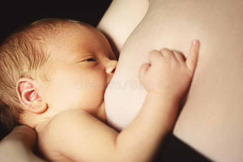 Amamantamiento la madre alimenta al bebé recién nacido con el pecho imagen de archivo libre de regalías