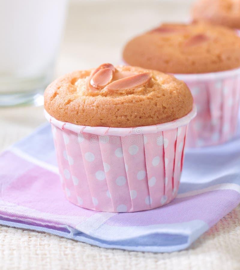 Amandel cupcakes royalty-vrije stock foto