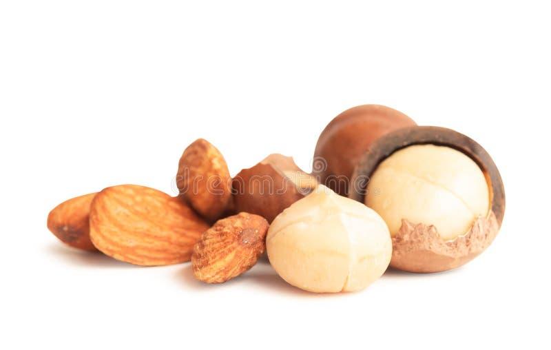 Amandel en macadamia noten op witte achtergrond worden geïsoleerd die stock afbeeldingen