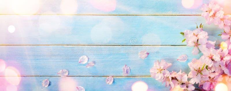 Amandelbloesem op Blauw Hout royalty-vrije stock afbeelding