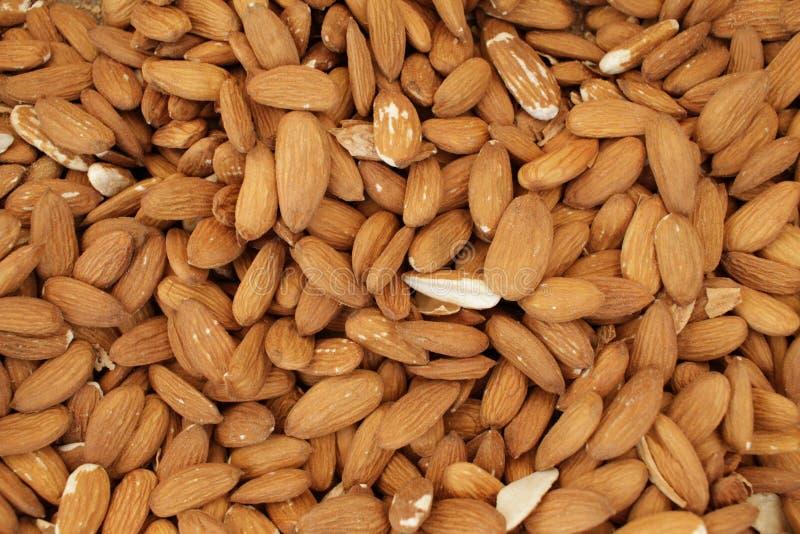 Amandelen De noten van de Peleedamandel stock foto's
