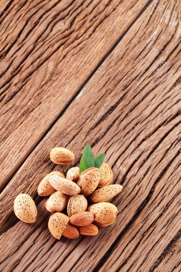 Amandelnoten met bladeren. royalty-vrije stock afbeelding