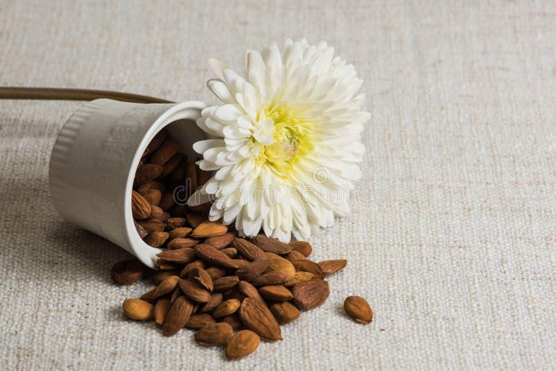 Amandes épluchées dans une cuvette et des fruits secs blancs d'amandes sur la texture beige de tissu, décoration de fleur blanche photographie stock