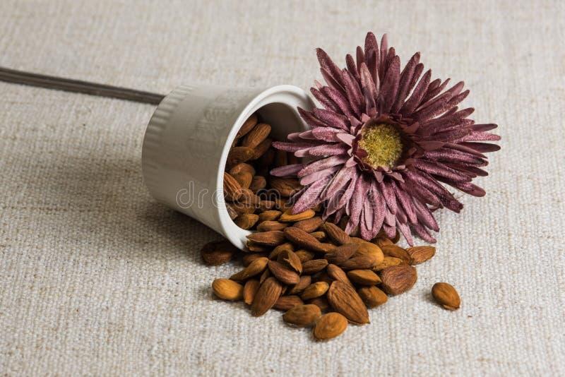 Amandes épluchées dans une cuvette et des fruits secs blancs d'amandes sur la texture beige de tissu, décoration de fleur photographie stock libre de droits