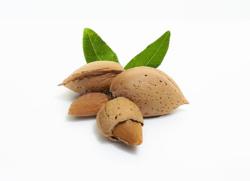 Download Amandes Images stock - Image: 26686604